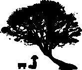 Panda_tree